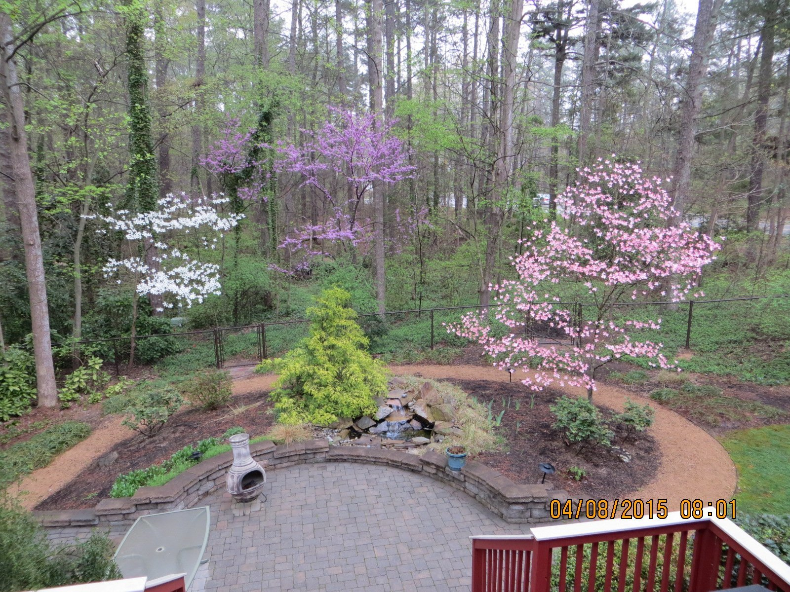 Landscapped Yard in Spring Bloom