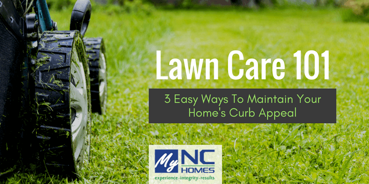 Lawn Care 101: tips to keep your yard looking fresh