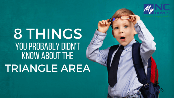 8 Fun Facts About The Triangle Area