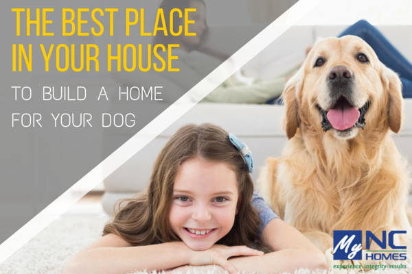 Best Dog Home