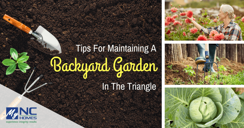 Gardening tips for your home in Durham, Cary, and Chapel Hill